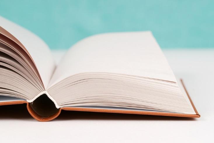 読み取る能力を鍛えれば、成績アップも間違いなし! 読解力の身につけ方